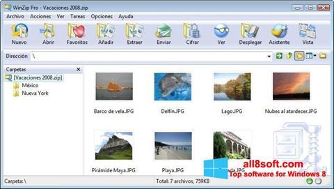 Capture d'écran WinZip pour Windows 8