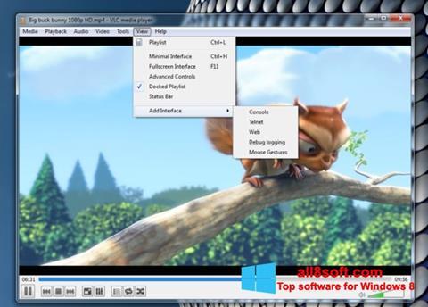 Capture d'écran VLC Media Player pour Windows 8